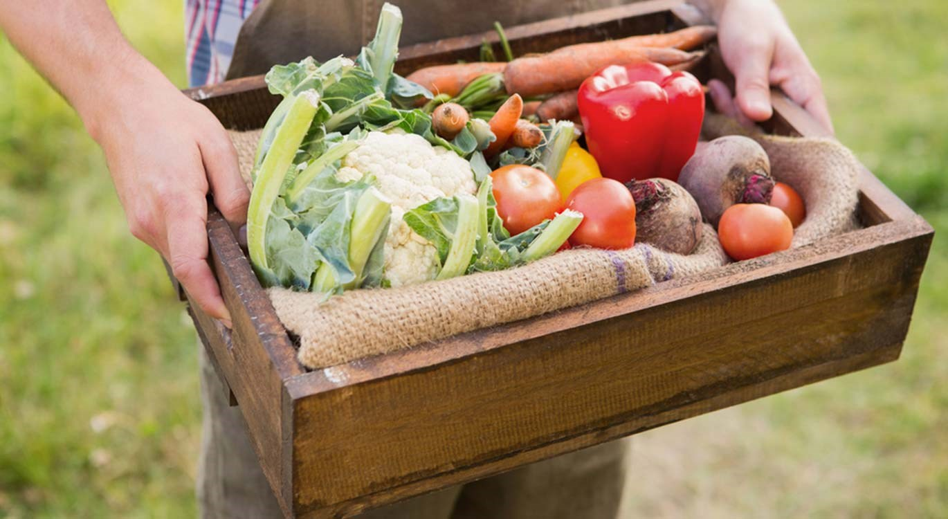 Crate of vegetable