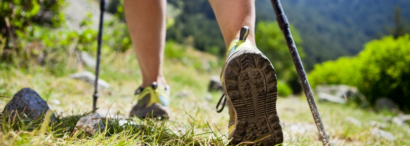 nordic walking in the countryside