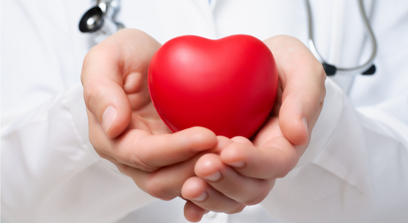 doctor holding a heart representing heart disease